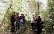 2 giugno: un'oasi urbana a lungotevere delle Navi.