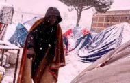 Baobab Experience, gli unici a occuparsi dei migranti nelle ore dell'emergenza neve